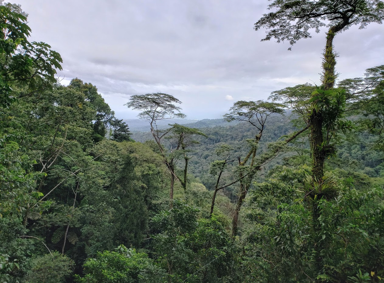 If you look close, you can see our ship from the top of the mountain in the Veragua Rainforest.