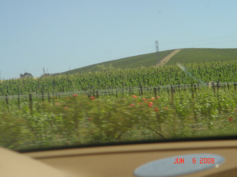 June 6, 2008 going to Napa
