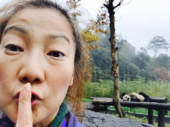 Hello from Panda Zoo in China!