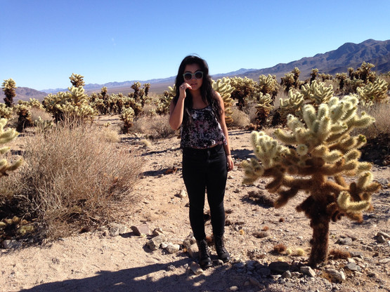 Joshua Tree Nat'l Park - 2013년 12월 24일
