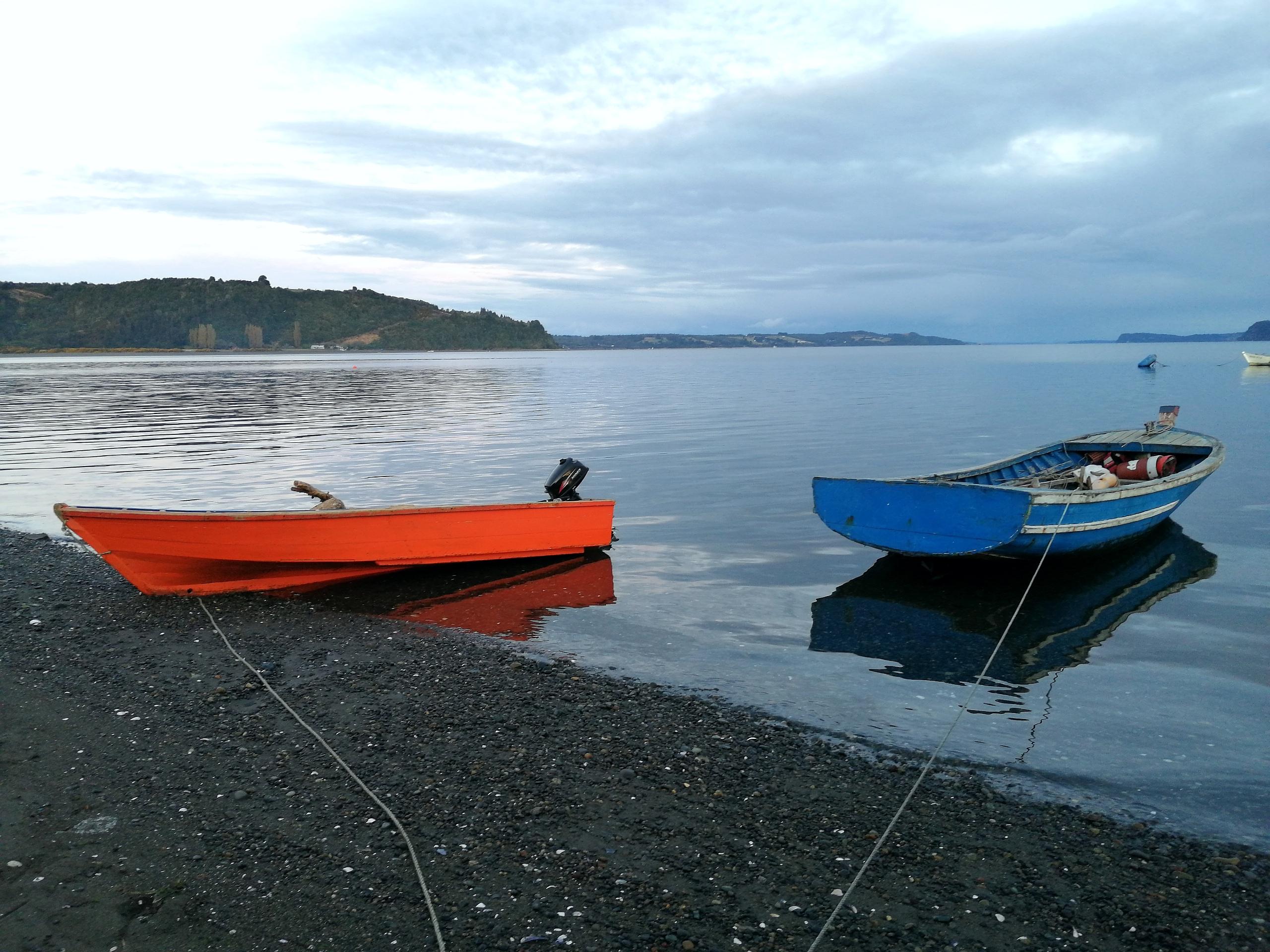 Metahue - Isla Butachauques (6)