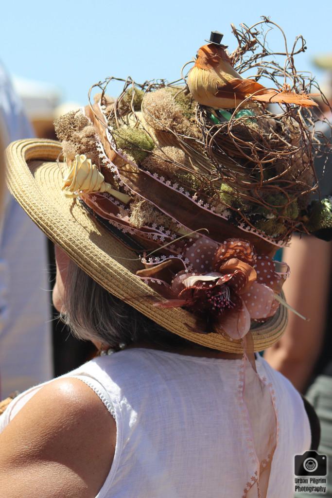 Bird nest hat.