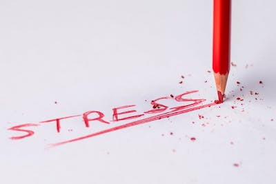 6 Ways to Help Children Deal With Holiday Stress & Anxiety