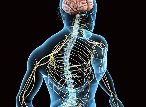 Neurodinamica, cervicalgia e lombalgia