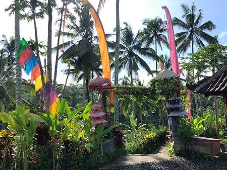 Ubud Bali IMG_6444.jpeg