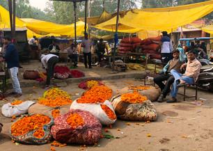 Local market in Jaipur India