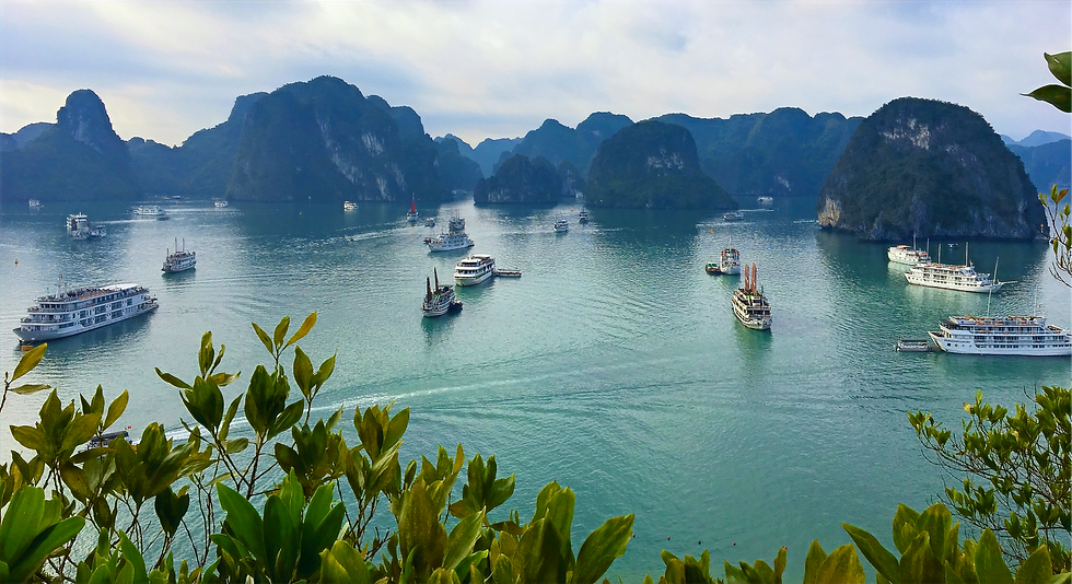 Halong Bay Vietnam IMG_3632_edited.png