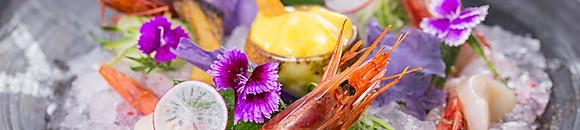 tartare   special sashimi