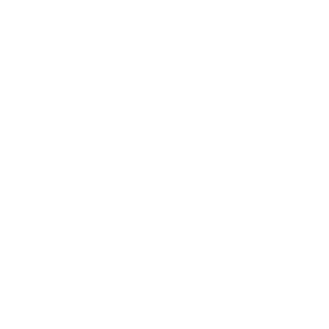 Flamingo Stand Tall