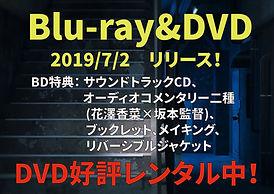 BD_DVDレンタル中-01-01.jpg