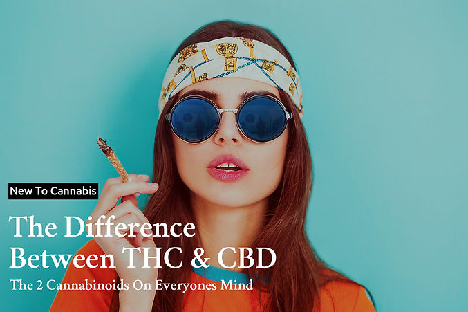 New To Cannabis - The Difference Between