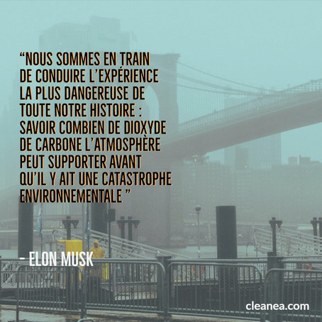 Développement durable - citation Elon Musk