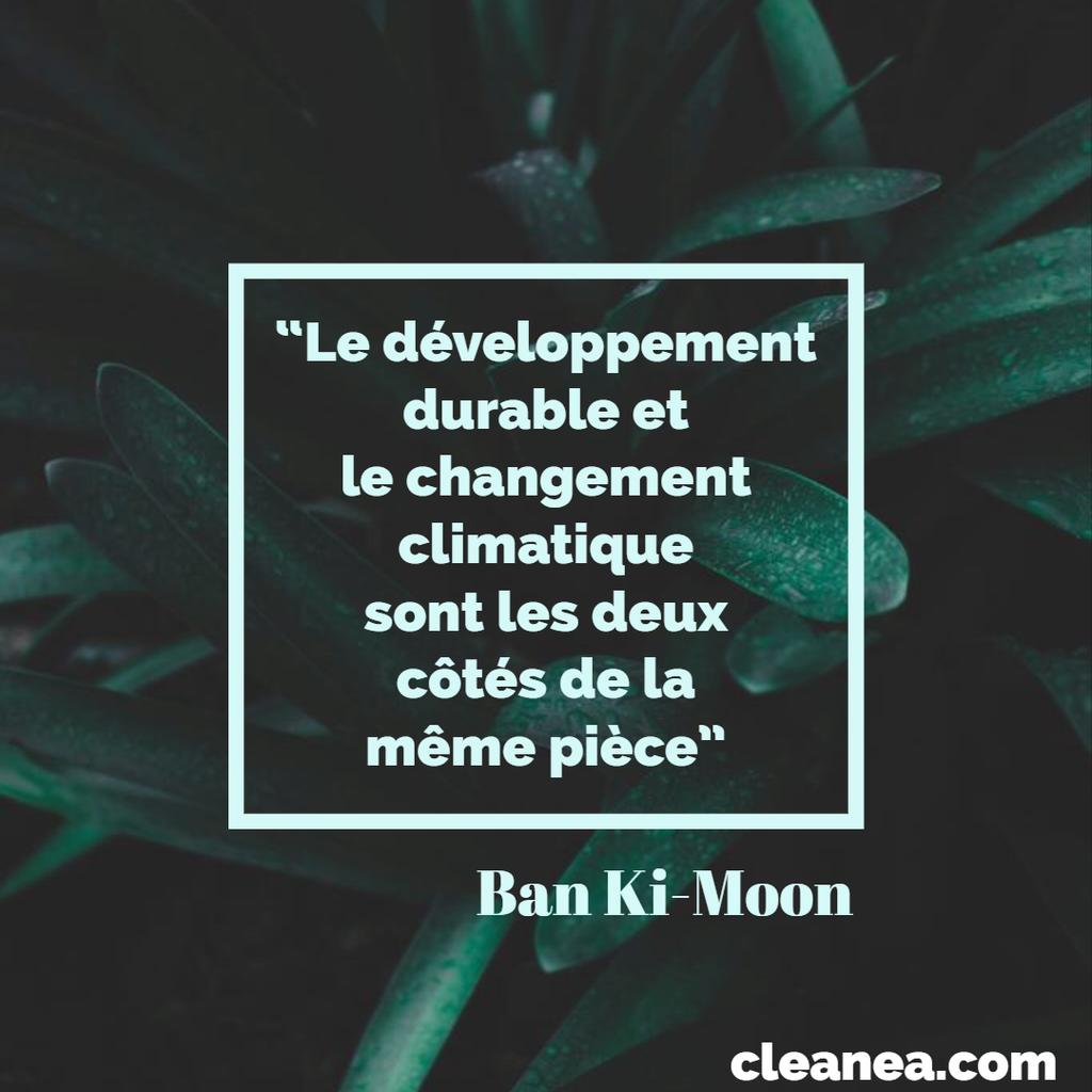 Le Développement Durable Et Le Changement Climatique Citation