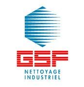 logo_gsf.jpg