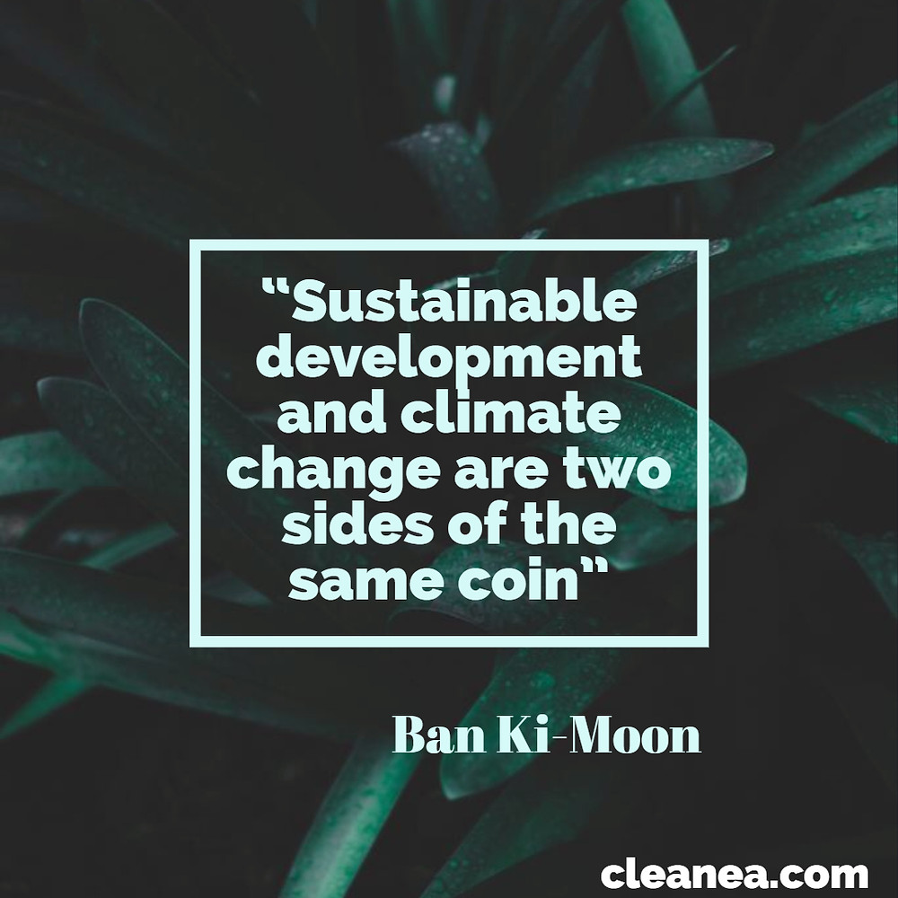 Sustainable development and climate change are two side of the same coin. Ban Ki Moon quote. Infography.