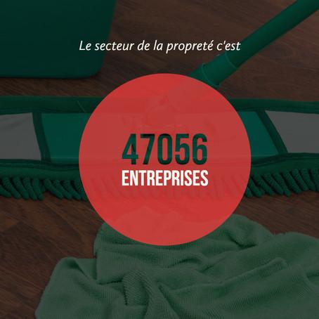 Infographie:  47056 entreprises dans le secteur de la propreté
