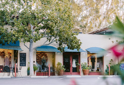 Wendy Foster in Montecito, CA