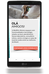 Site responsivo para smartphone.