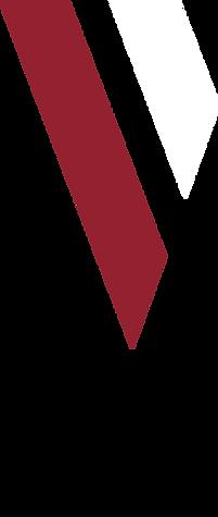 vap-stripes-main.png
