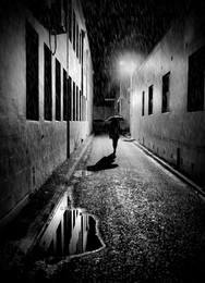 RainyDaze335108167 (2).jpg