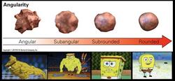 spongeround.png