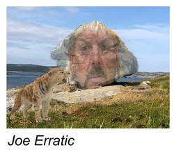 joe_erratic.jpg