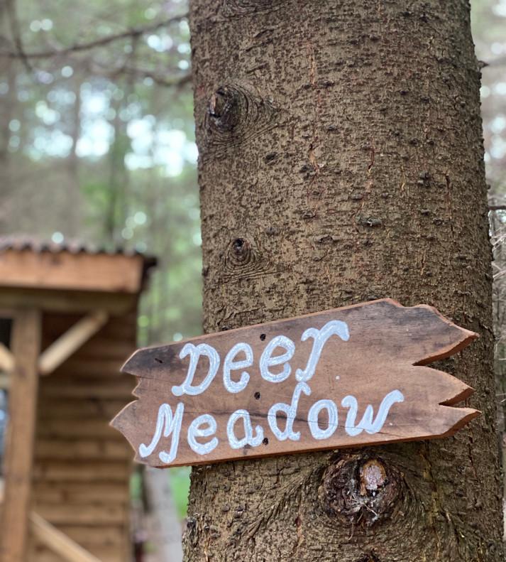24 The Deer Meadow.jpeg