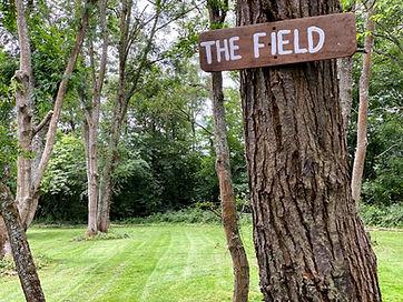 The Field.jpeg
