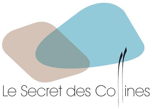 D-4le secret des collines.jpg
