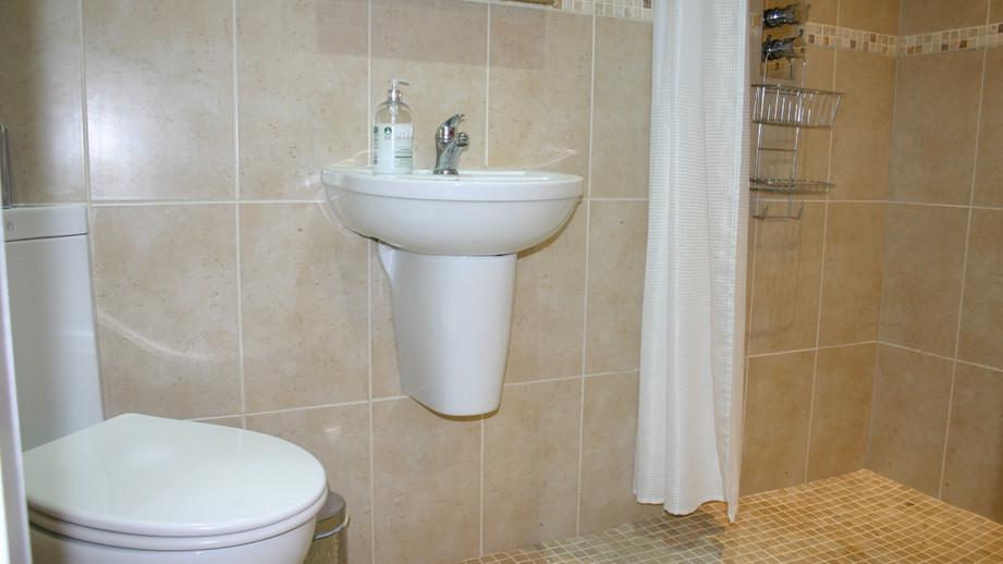 (14) En-suite shower room.JPG