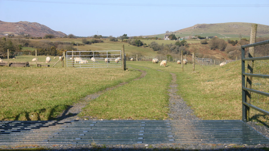 (25) Looking back down the track to the main entrance for Hendre Barns.JPG