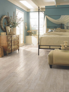 COASTAL-ART-AA774-SAND-DOLLAR Fogelsongers Floors