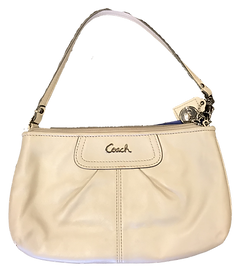 GHI_Purse Clipping.png