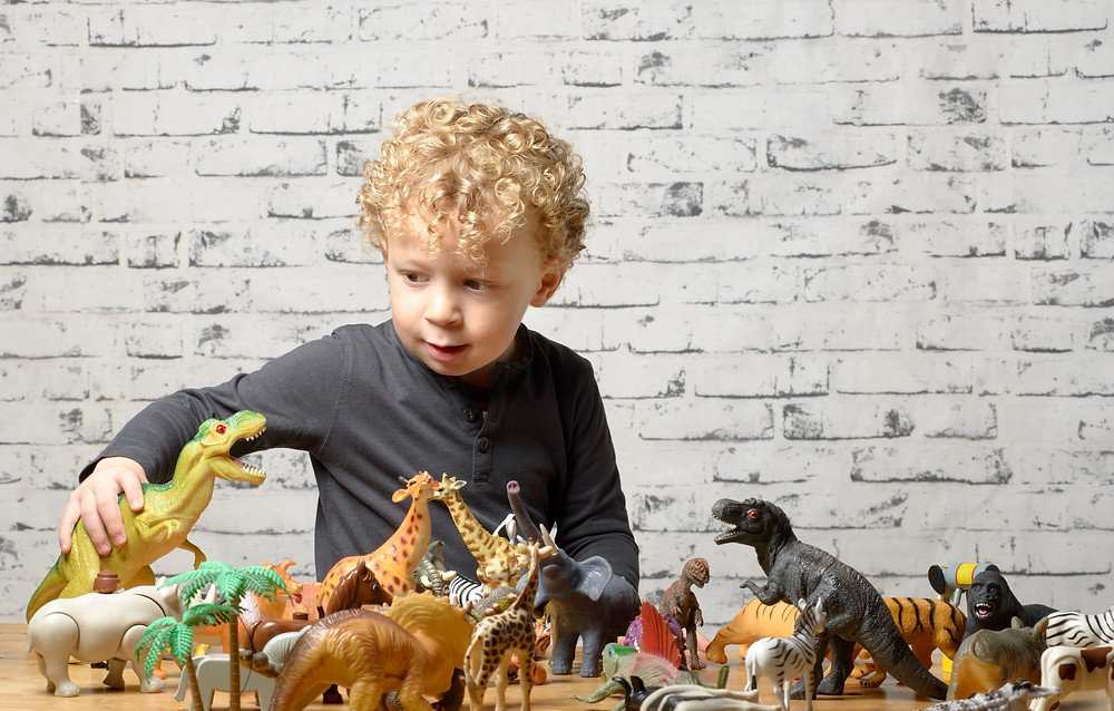 A child with short curly hair wearing a grey long sleeve shirt plays with several small plastic animals including dinosaurs, giraffes, an elephant and zebra in front of a white brick wall.