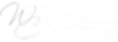 Vilage Cener Logo