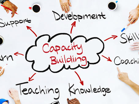 The Case for Organizational Capacity