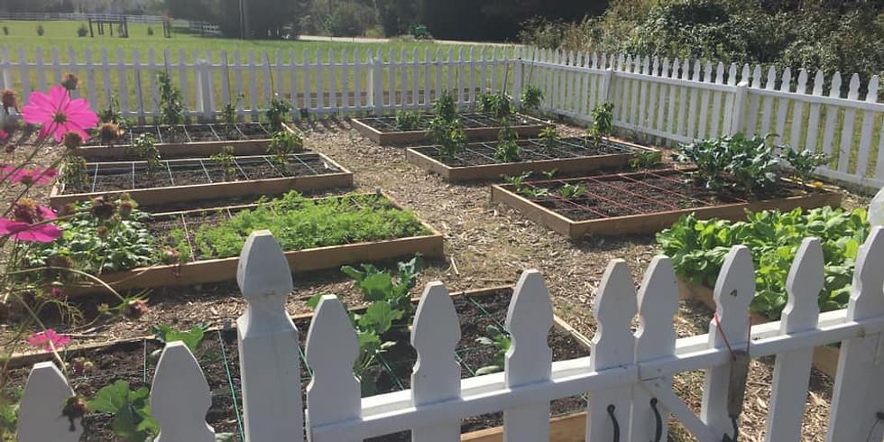 New Beginnings Garden Ministry: Children's Seedling Day