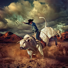 Cowboy Riding White Bull