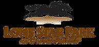 LSP-2C-Logo.png