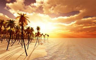 Artes visuais 120-Praia 3D.jpg