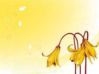 Floral 052.jpg