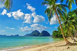 Praia 037-Tropical.jpg