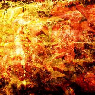 Abstrato 042.jpg