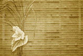 Floral 015-Design em petunia.jpg