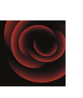 Artes visuais 020-Rosa vermelha.jpg