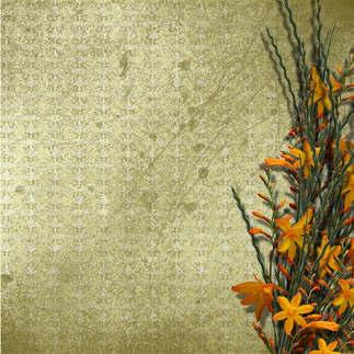 Floral 048.jpg