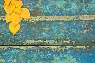 Contemporâneo_032-Madeira_e_flor_amarela.jpg