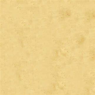 Reprodução 102-Textura bege.jpg