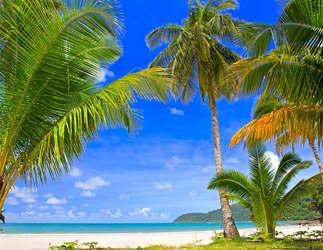 Praia 142-Mar tropical.jpg