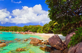 Praia 030-Flores e rochas, Seychelles.jpg